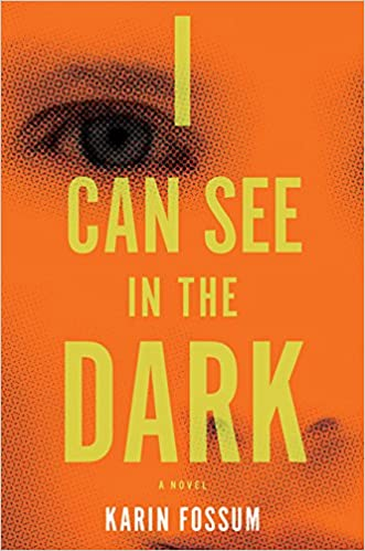 Image result for i can see in the dark karin fossum