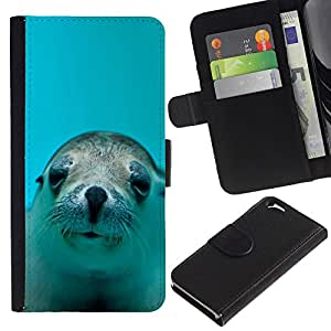 Apple (4.7 inches!!!) iPhone 6 , la tarjeta de Crédito Slots PU Funda de cuero Monedero caso cubierta de piel (Cute Happy Sea Lion Dog)