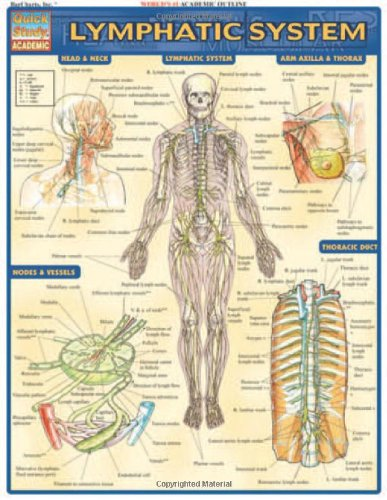 Lymphatic System (Quick Study Academic) (Hand Massage Chart)