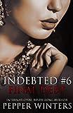 Final Debt (Indebted) (Volume 6)