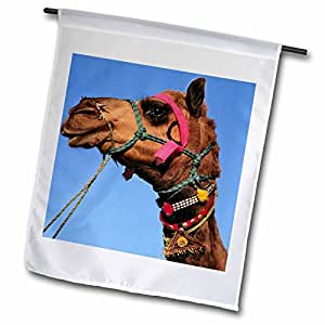 Danita Delimont - Camels - India, Rajasthan, Pushkar, Camel at Pushkar Fair -AS10 RER0293 - Ric Ergenbright - 18 x 27 inch Garden Flag (fl_70920_2)