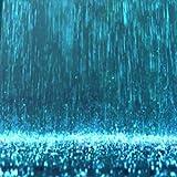 Rain: Rain Showers, Driving in the Rain, Thunder, Hiding Under a Tree