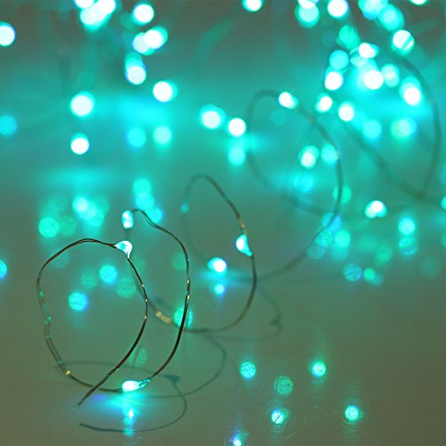 YIHONG Fairy Lights USB Plug-in String Lights with RF Remote 33ft Firefly Twinkle Lights for Bedroom Party Decoration Wedding,13 Vibrant Colors, Fade|Flash|Strobe Mode by YIHONG (Image #1)