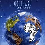 Human Zoo [Import anglais]