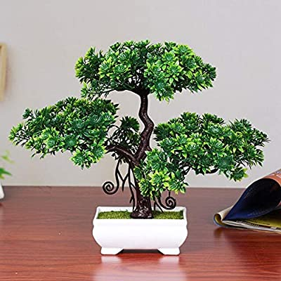 Hockus Decorations Simulation Welcoming Pine Potted Green Bonsai Pine Small Bonsai Home Decorations Desktop Ornaments - (Color: Double Green Pine): Home & Kitchen