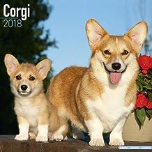Corgi Calendar - Dog Breed Calendars - 2017 - 2018 wall Calendars - 16 Month by Avonside