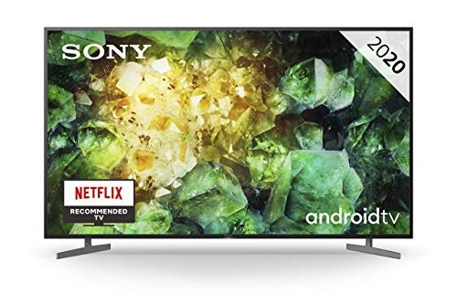 Sony KD-65XH8196 -Televisor 4K HDR (procesador X1 4K HDR, Triluminos, 4K X-Reality PRO, MotionFlow XR, X-Balanced…