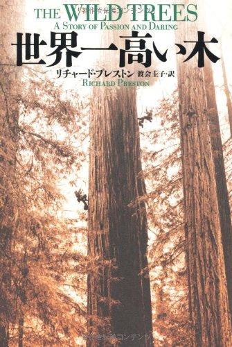 世界一高い木