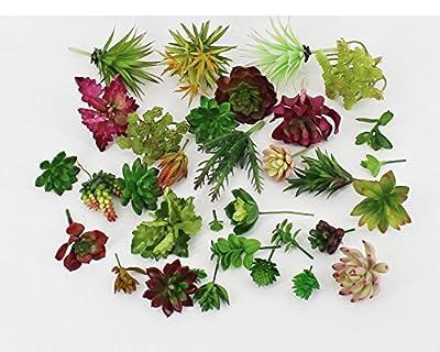 Lopkey Plastic Different Mini Succulents, Artificial Cactus Plant