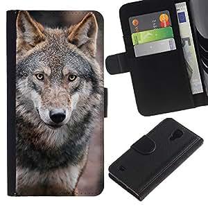 Paccase / Billetera de Cuero Caso del tirón Titular de la tarjeta Carcasa Funda para - Wolf Wild Dog Brown Forest Fairytale Eyes - Samsung Galaxy S4 IV I9500