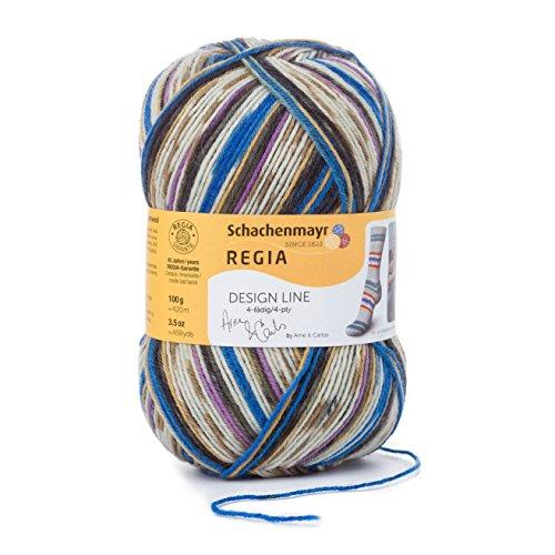Regia Design Line by Arne & Carlos 4 Ply Color 100g 02463 Tokke (Regia Design Line)