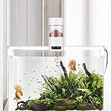 Alician Automatic Timing Feeder for Aquarium Fish Bowl Food Dispenser Fishing