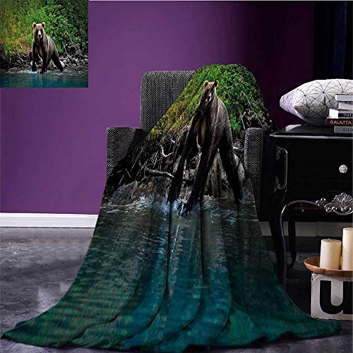 (sunsunshine Cabin Decor Digital Printing Blanket Grizzly Brown Bear in Lake Alaska Untouched Forest Jungle Wildlife Image Warm Blanket Green Brown Blue Bed or Couch 80