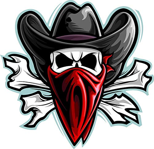 Crazy Discount Outlaw Skull Vinyl Sticker Decal Outside Inside Using for Laptops Water Bottles Cars Trucks Bumpers Walls, 3