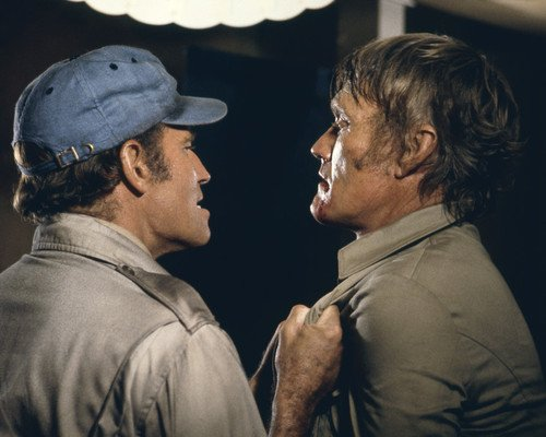 Charlton Heston and Chuck Connors in Soylent Green get tough fight scene 16x20 (Soylent Green Poster)