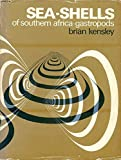 img - for Sea-Shells of Southern Africa: Gastropods book / textbook / text book
