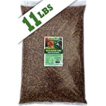 NaturesPeck Dried Mealworms (11 lbs) Non-GMO High Protein Treats for Chickens & Wild Birds