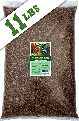 NaturesPeck Dried Mealworms (11 lbs) Non-GMO High Protein Treats for Chickens & Wild Birds ()