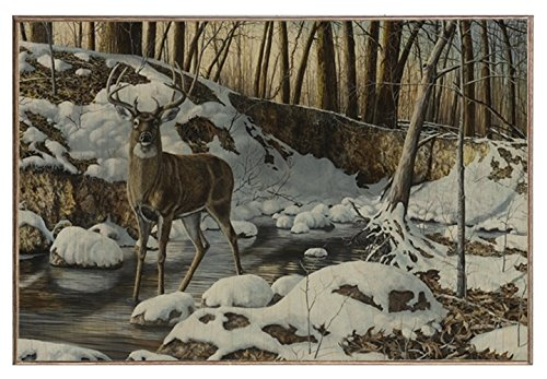River Bottom Buck - Birch Wood Print (12''x18'') (Bottom River Buck)