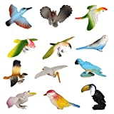 These birds toy models can fulfill your collection inclination or your child's imaginative play.        Features:      A set of 12pcs vivid birds toysEach bird can stand alone with its typical posture, allowing you to place it anywhere for decorat...