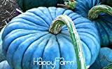 buy 20pcs/pack Vegetable seeds, Perennial Rare Ornamental edible Blue Jarrahdale Pumpkin seed exotic Blue grey Coloring,#8Z6P0E now, new 2018-2017 bestseller, review and Photo, best price $4.98