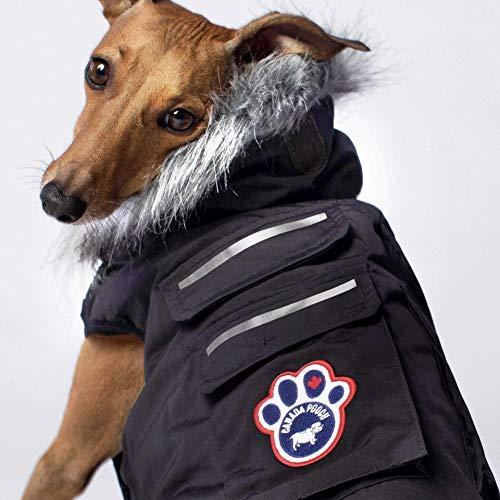 Canada Pooch Everest Explorer Dog Vest, Black, Size 18 by Canada Pooch (Image #3)