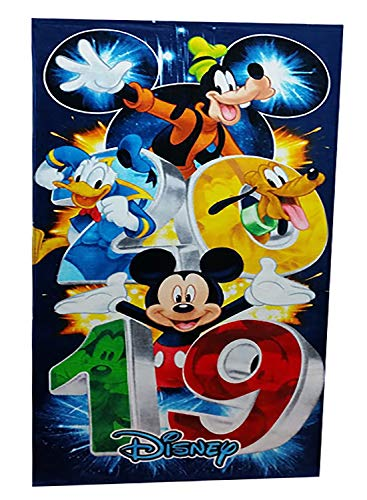 Disney Mickey and Gang 2019 Fabulous Fireworks Beach Towel