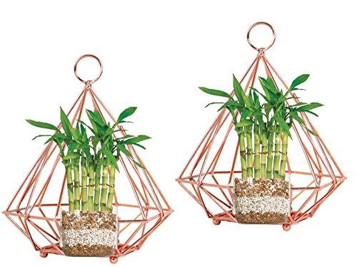 Inspiration World Geometric air Planter Flower pots Tea-lite Hanging Lantern