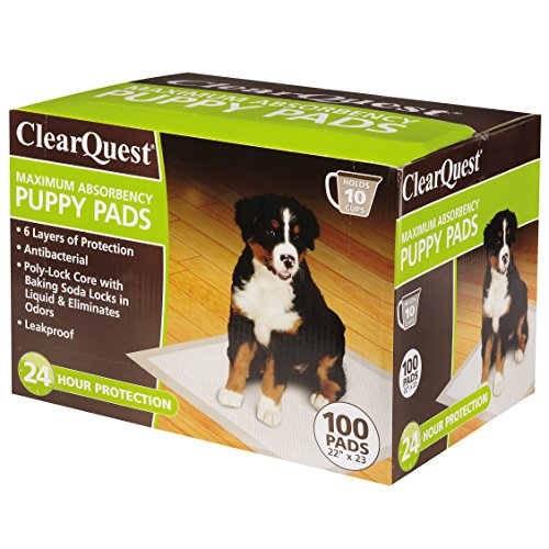 ClearQuest Maximum-Absorbency Puppy Pads, 100-Count Box, Anti-Microbial, Hold 10 Cups, Scented to Attract Puppies