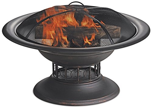 Endless Summer WAD15129MT Brushed Copper Wood Burning Outdoor Firebowl ()