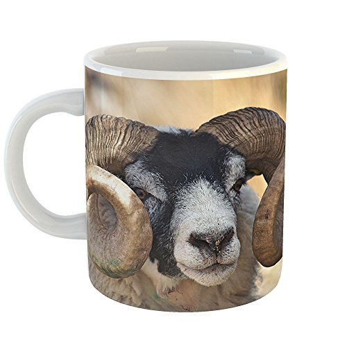 Westlake Art - Ram Sheep - 15oz Coffee Cup Mug - Modern Picture Photography Artwork Home Office Birthday Gift - 15 ()