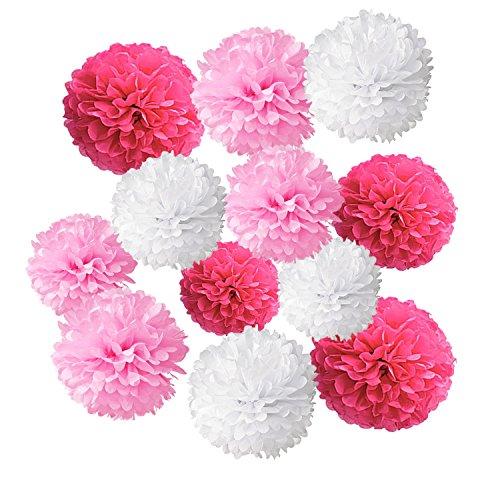 Wartoon Tissue Paper Pom Poms Flowers for Wedding
