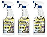 Grandma's Secret GS7001 Laundry Spray, 16-Ounce (Тhrее Pаck, Red)
