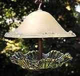 Covered glass bird feeder