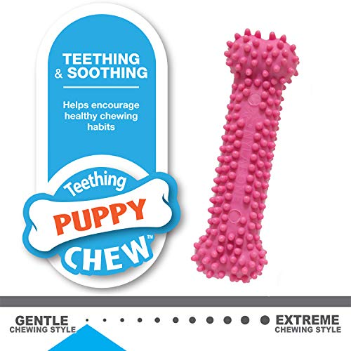 Large Product Image of Nylabone Puppy Chew Variety Toy & Treat Triple Pack, Chicken Lamb Apple, 3 Count, Regular