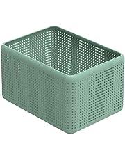 Rotho, Madei pudełko do przechowywania bez pokrywki 13 l, tworzywo sztuczne (PP), bez BPA, zielone, 13 l (32,6 x 23,8 x 18,8 cm)