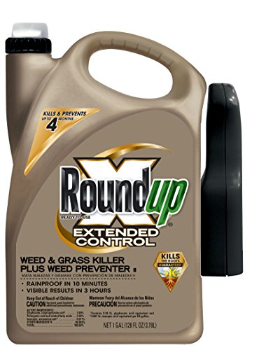 Roundup Ready-to-Use Extended Control Weed & Grass Killer Plus Weed Preventer II Trigger