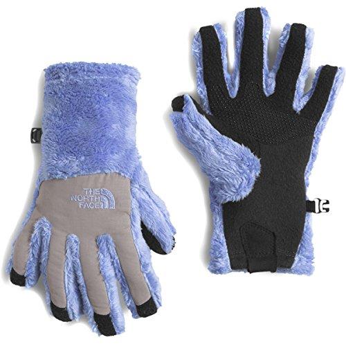 Grapemist (The North Face Denali Thermal Etip Glove Girls Grapemist Blue Medium)