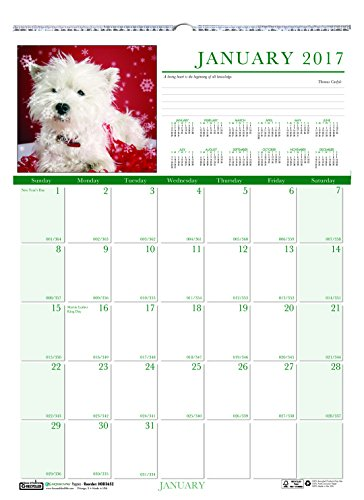 Earthscapes Puppies Wall Calendar - House of Doolittle 2017 Monthly Wall Calendar, Earthscapes Puppies, 12