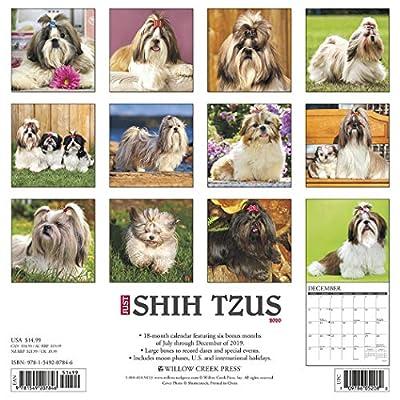 Just-Shih-Tzus-2020-Wall-Calendar-Dog-Breed-Calendar