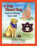 download ebook a dog named shug finds the missing game ball pdf epub