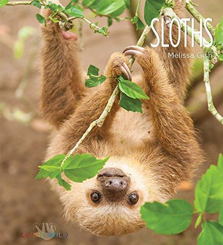 Sloths (Living Wild) - Creative Paperbacks