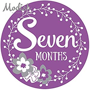 12 Monthly Baby Stickers, Purple, Gray, Flowers, Girl, Baby Belly Stickers, Baby Month Stickers, First Year Stickers Months 1-12, Purple, Grey, Baby Girl 7