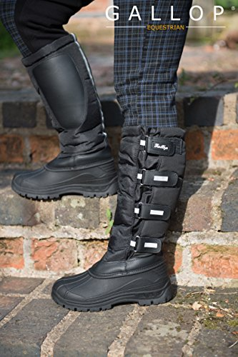 Gallop Alpine Gallop Alpine Gallop Alpine Boot Boot qqOnHTr