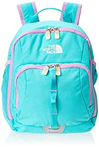 Amazon.com: The North Face Sprout (Toddler) Backpack