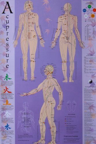 Acupressure Chart - Points & Meridians