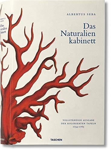 (Albertus Seba. Cabinet of Natural Curiosities (Jumbo))