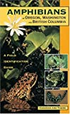 Amphibians of Oregon, Washington and British Columbia, Charlotte Corkran and Chris Thoms, 1551050730