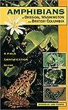Amphibians of Oregon, Washington and British Columbia: A Field Identification Guide