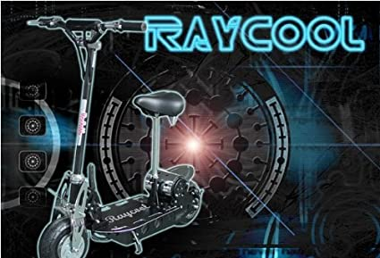 Patinete Electrico 500w Raycool Roller: Amazon.es: Juguetes ...